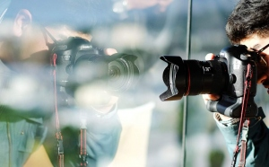 Nikon & Sony